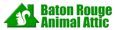 Baton Rouge Animal Attic